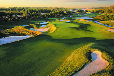 A Course to 'Dye' for at Barefoot Golf Resort