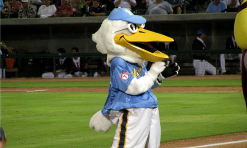 Take Your Crew Out to the Ball Game With the Myrtle Beach Pelicans