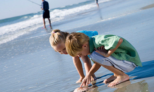 Myrtle Beach The Perfect Vacation Destination For Families